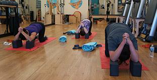 Turbodog Yoga at TriPilates
